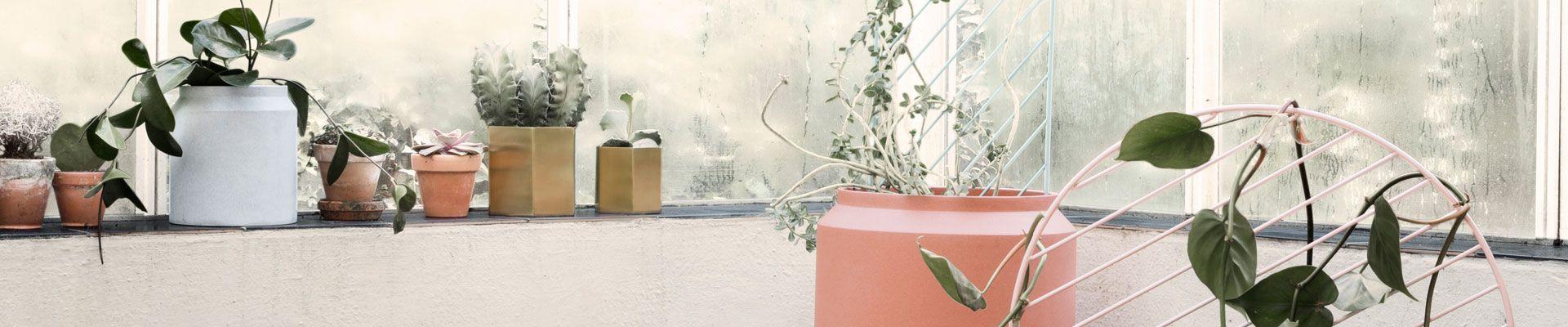 Plantenbakken en Bloempotten buiten