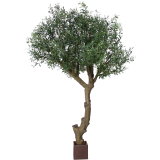 Designplants Olijfboom kunstplant