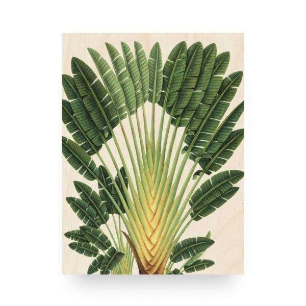 KEK Amsterdam Botanical Palm wandpaneel hout