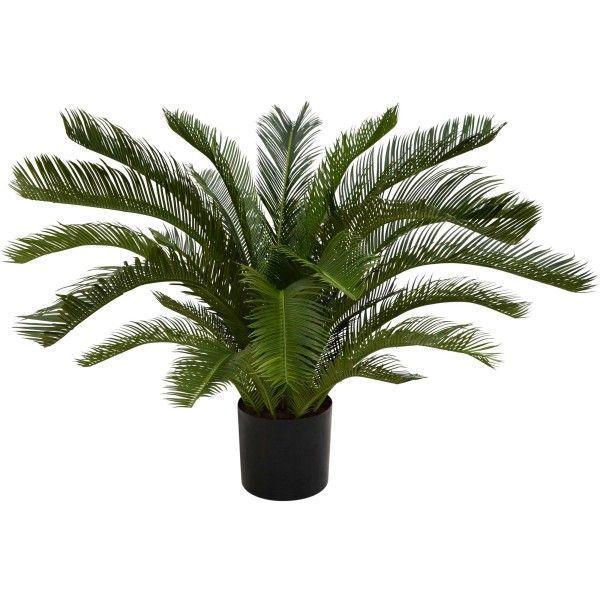 Designplants Cycas palm kunstplant 80