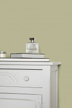 Farrow & Ball Hout- en metaalverf binnen Ball Green (75)
