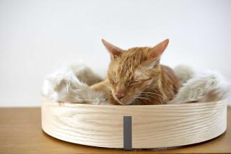 MiaCara Anello kattenmand