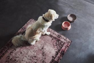 MiaCara Doppio hondenvoerbak met blad small