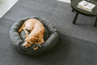MiaCara Rondo hondenmand medium