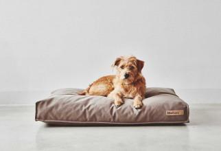 MiaCara Stella hondenkussen medium
