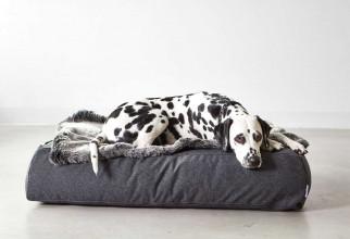 MiaCara Stella lounge hondenkussen small/medium