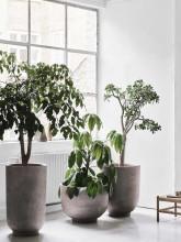 &tradition Planter SC45 bloempot 75