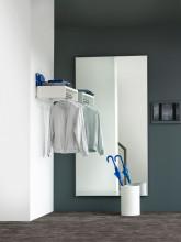 Van Esch Liston spiegel 50x50