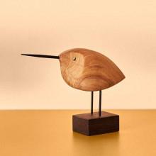 Warm Nordic Beak Bird, Awake Snipe