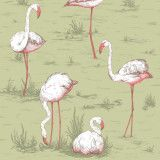 Cole & Son Flamingos behang