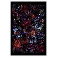Moooi Carpets Fool's Paradise vloerkleed 200x300