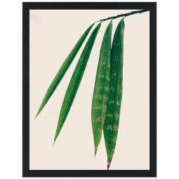 Get Art Shot of green I kunstfotografie henneppapier