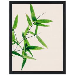 Get Art Shot of green II kunstfotografie henneppapier