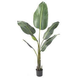 Kave Home Zelena kunstplant