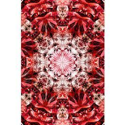 Moooi Carpets Crystal Fire vloerkleed 200x300