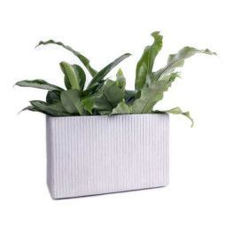 XLBoom Mon Rectangular bloempot medium