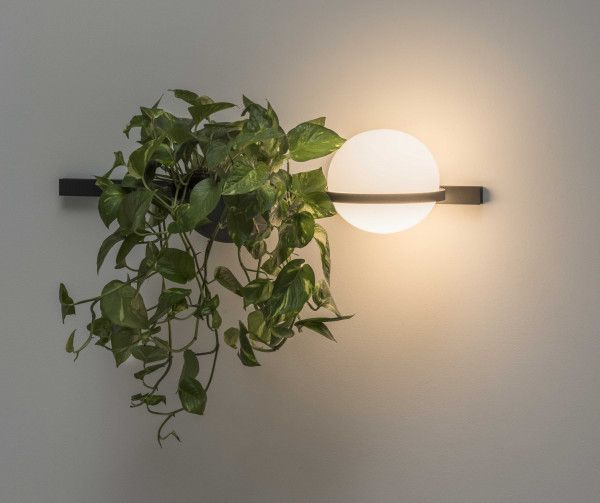 Vibia Palma Wandlamp 3702 LED met plantenbak