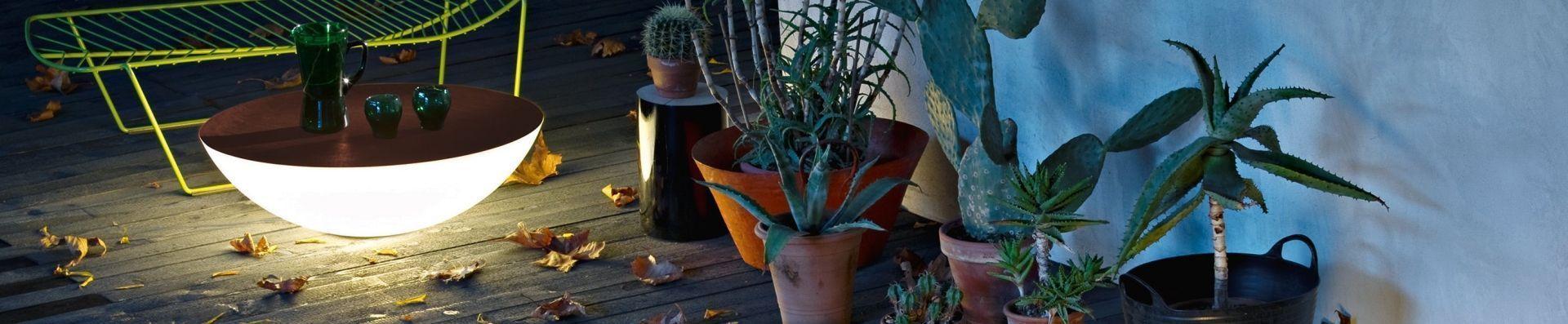 Tuintrend: Jardín Botánico