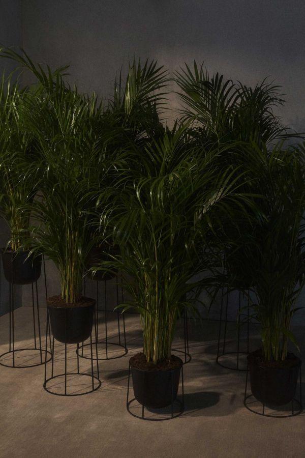 Menu Wire 202 plantenbak wit