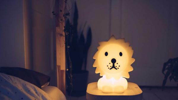 Mr Maria Leeuw eerste licht nachtlamp