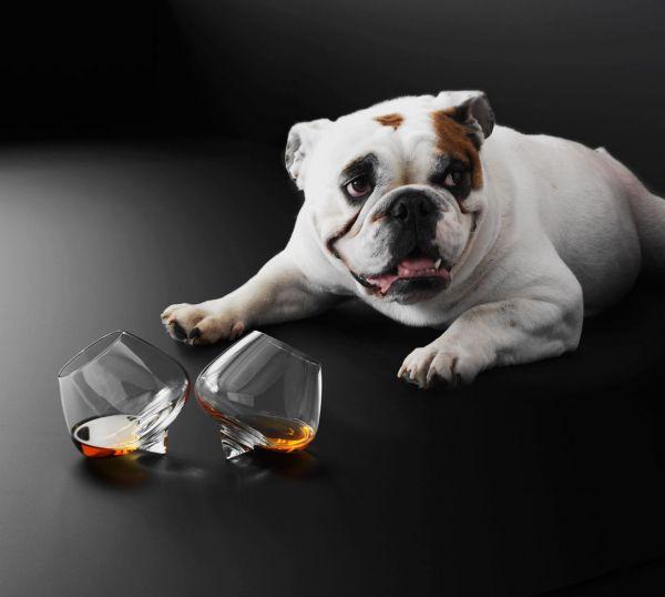 Normann Copenhagen Cognac glas 2 stuks