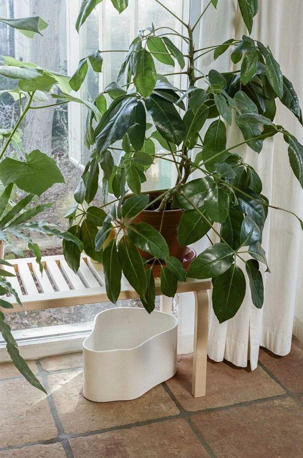 Artek Riihitie A plantenbak large