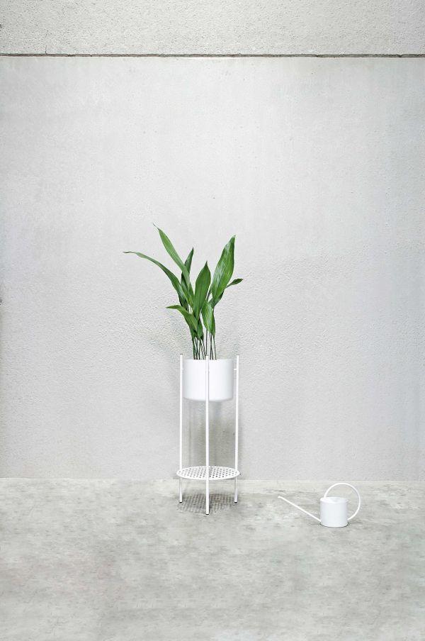 XLBoom Ent plantenbak medium